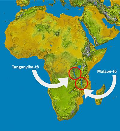 Afrika_térkép