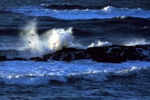 Óceánok, a törékeny óriások
